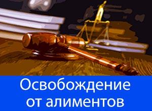 Новый закон освобождающий от алиментов