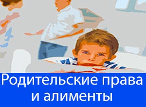 родительские права и алименты